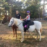 White Horse with saddle sidekick
