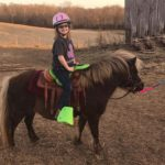 Little Pony Horse with saddle sidekick